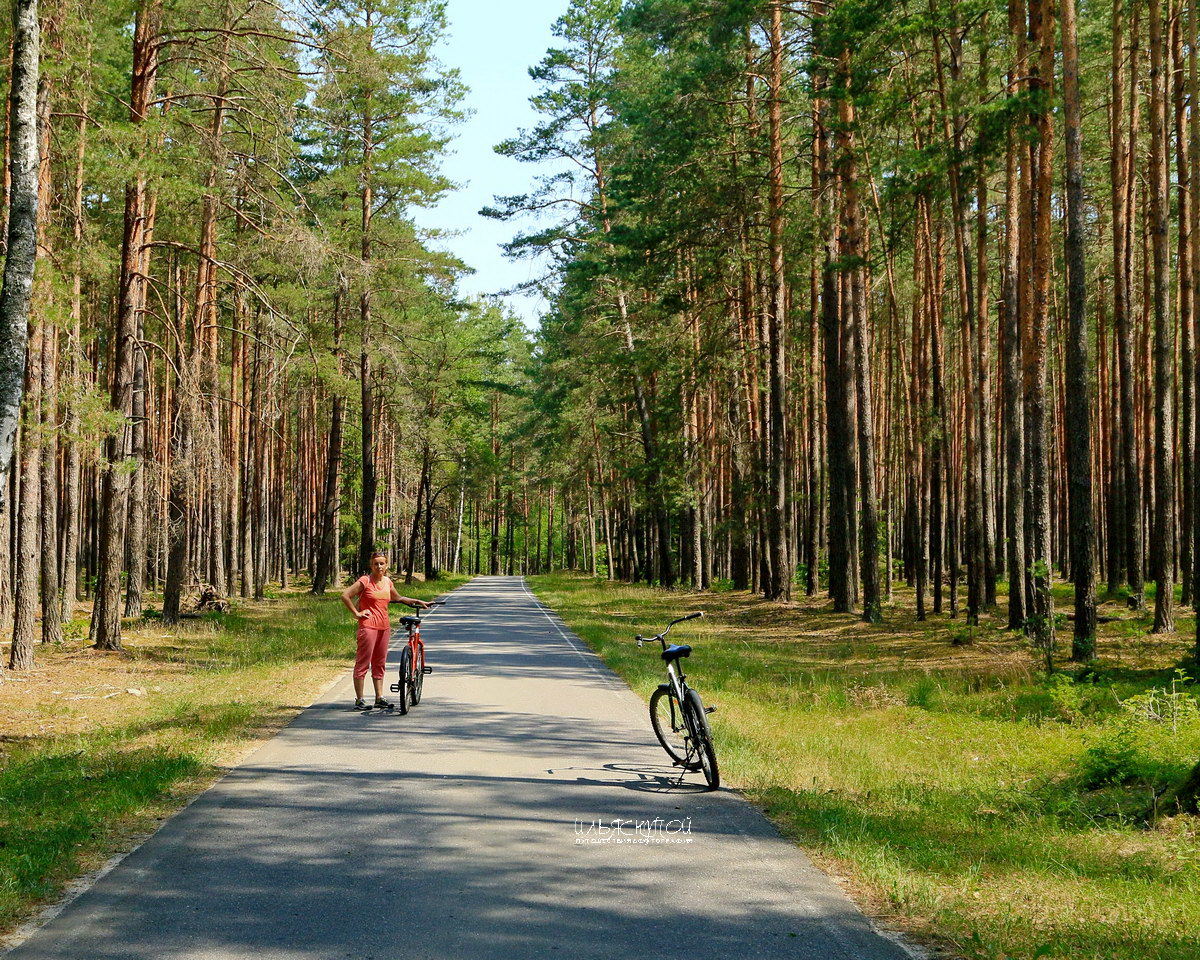 http://ws.pp.ru/foto/191213.Belarus-Obzor.04.jpg